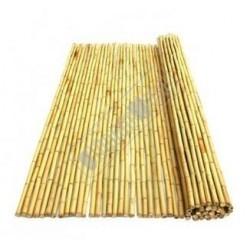 Bamboorol